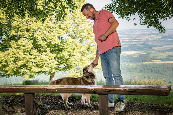HundeSinn Team Joe Orszulik