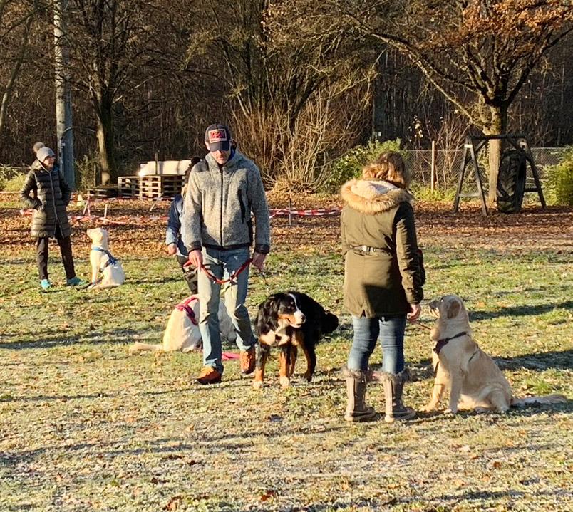 Gruppentraining mit Spaß und Ziel